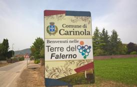 Carinola, Terre del Falerno
