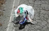 Casale di Carinola: rifiuti in mezzo alle strade. Ora basta sopportare!