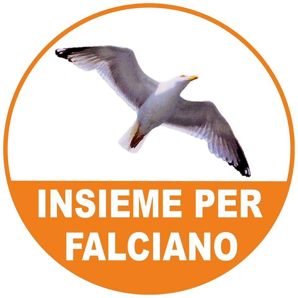 Lista N. 3 Insieme per Falciano
