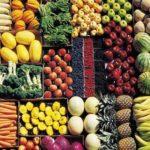 Legalità e progetto di agricoltura etica