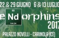 ENDORPHINS 2017 – Cultura, arte e colori a Palazzo Novelli