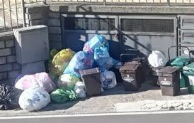 Casale e Carinola tutta: Natale tra i rifiuti